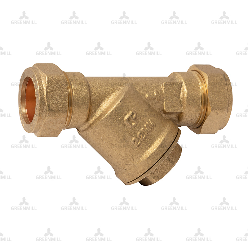 22mm Brass Y Strainer (pk 1)